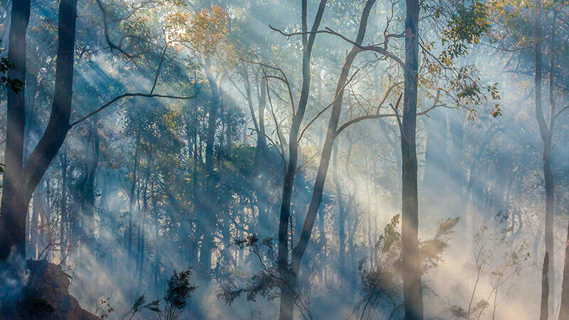 SMBI residents alerted to increased smoke and embers from North Stradbroke Island fire